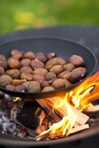 Barbecook kastanjepan