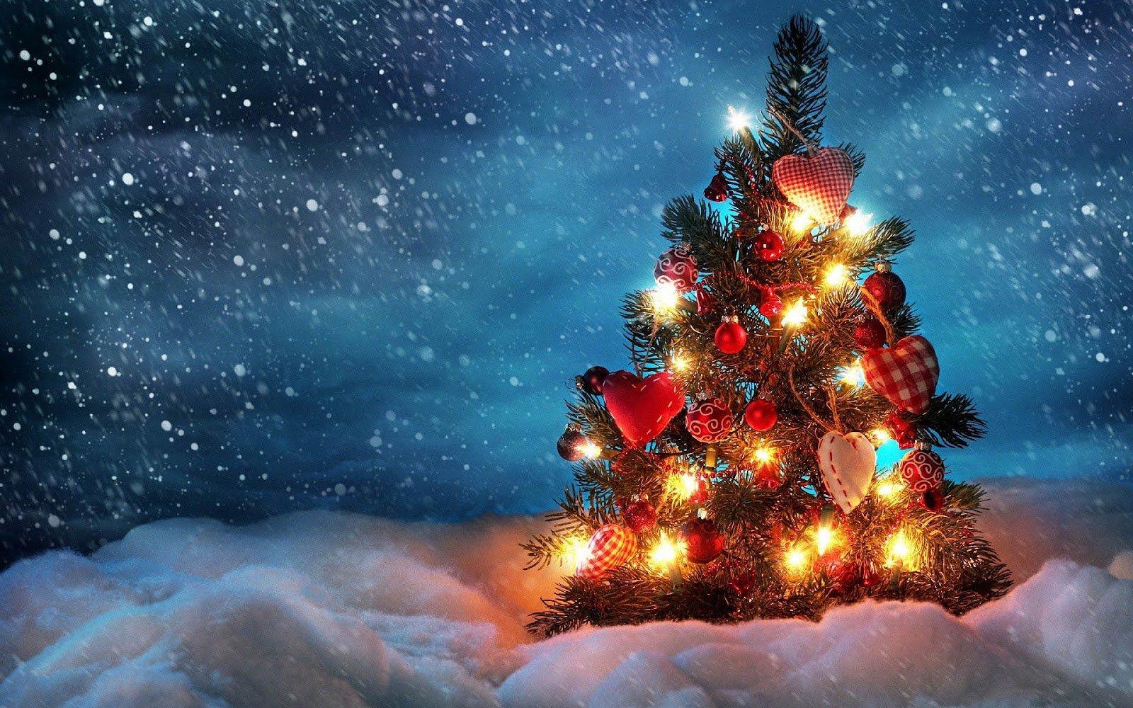 kerstboom1